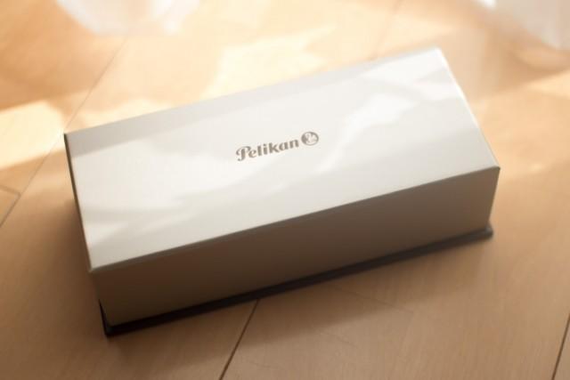 紙のスリーブに入った箱。これは通常のM600と同じですね。