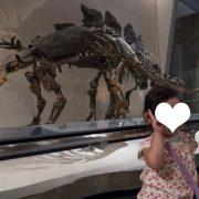 トゲトゲのついた恐竜さんの前でチーズ